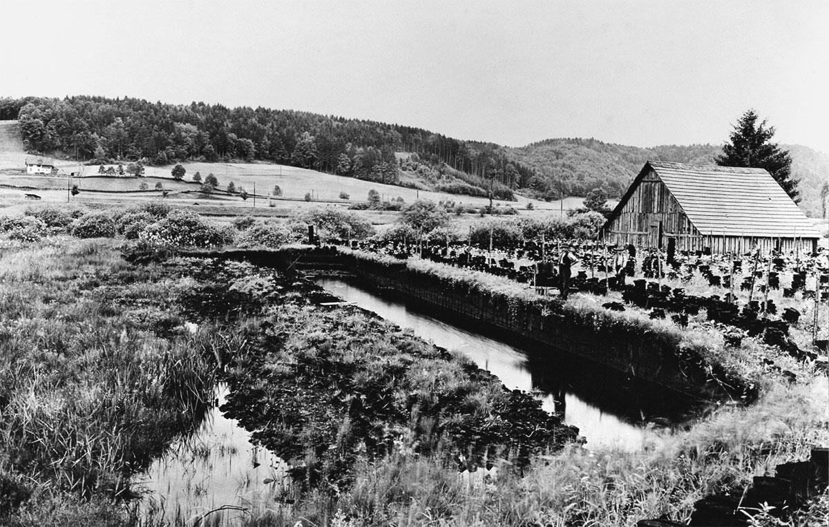 Das Obermoos nördlich von Münchenbuchsee um 1916.