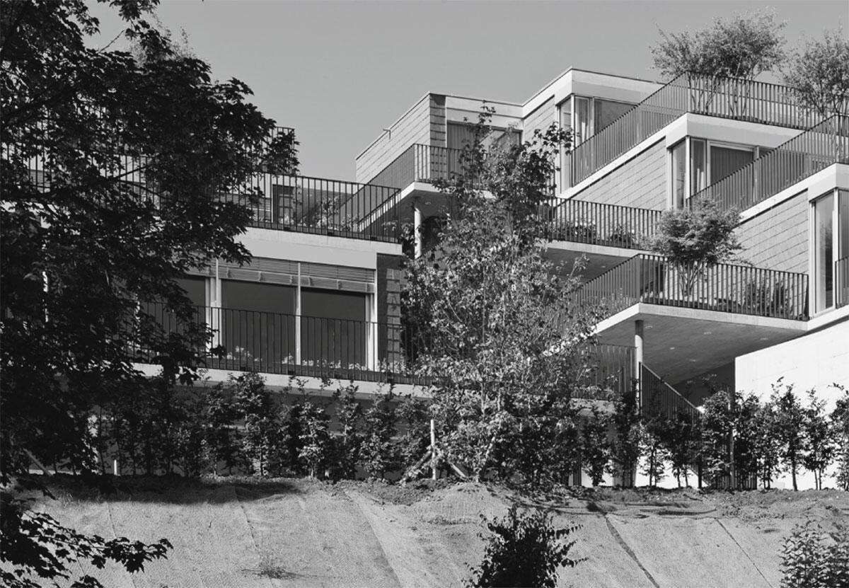 Terrassen und Baukörper fügen sich in den Hang ein, dereinst wird die Architektur mit dem Terrain verwachsen. Terrassenhaus Schindellegi.