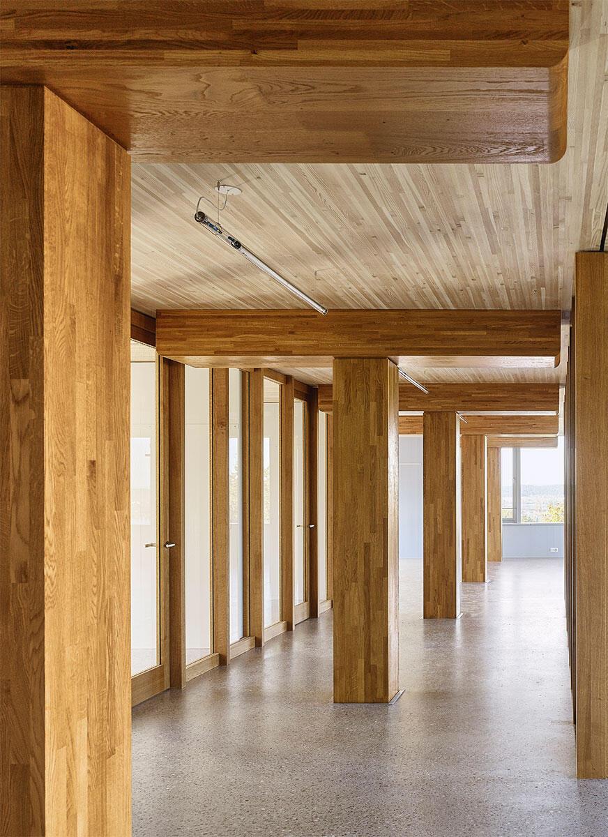 Im Fachstellenhaus Arenenberg stemmen Eichenpfeiler ein Gitter von Bändern aus Holzelementen, die durch den Ortbeton-Boden ausgesteift werden.