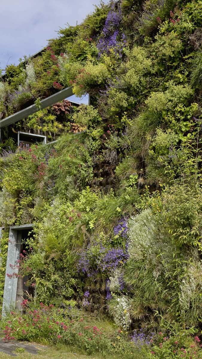 Beim grünen Mantel der Sportplaza Mercator in Amsterdam (2006) von Venhoeven CS und den Landschaftsarchitekten Copijn wachsen Pflanzen aus Taschen in einem Vlies aus Filz.  Bild: Luuk Kramer