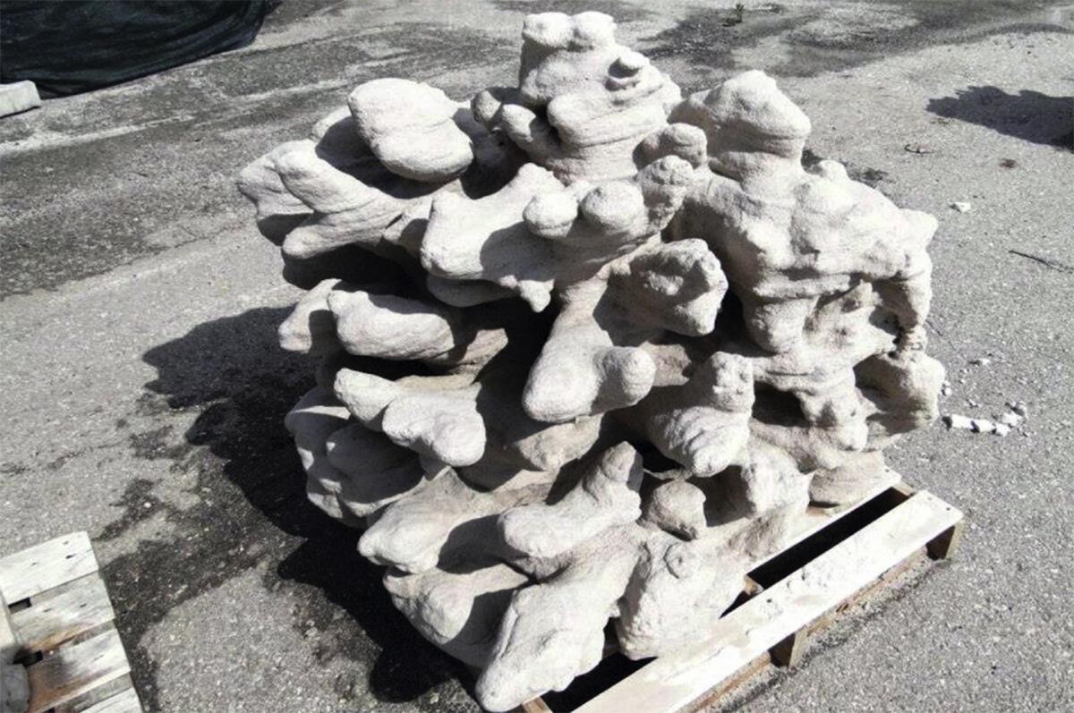 Die Koralle wurde durch ein 3D-Druck-Protokoll progammiert, das die Regeln des organischen Wachstum nachahmt.