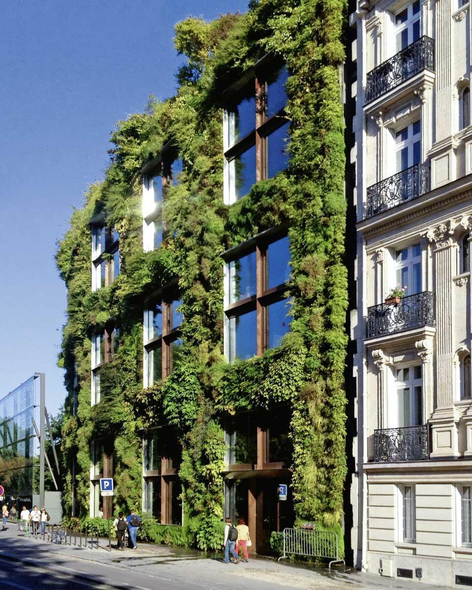 Die Fassade des Verwaltungstrakts ist innen und aussen exotisch begrünt; das Wuchern der Pflanzen kontrastiert die Hightech-Fenster.  Bilder: Patrick Blanc