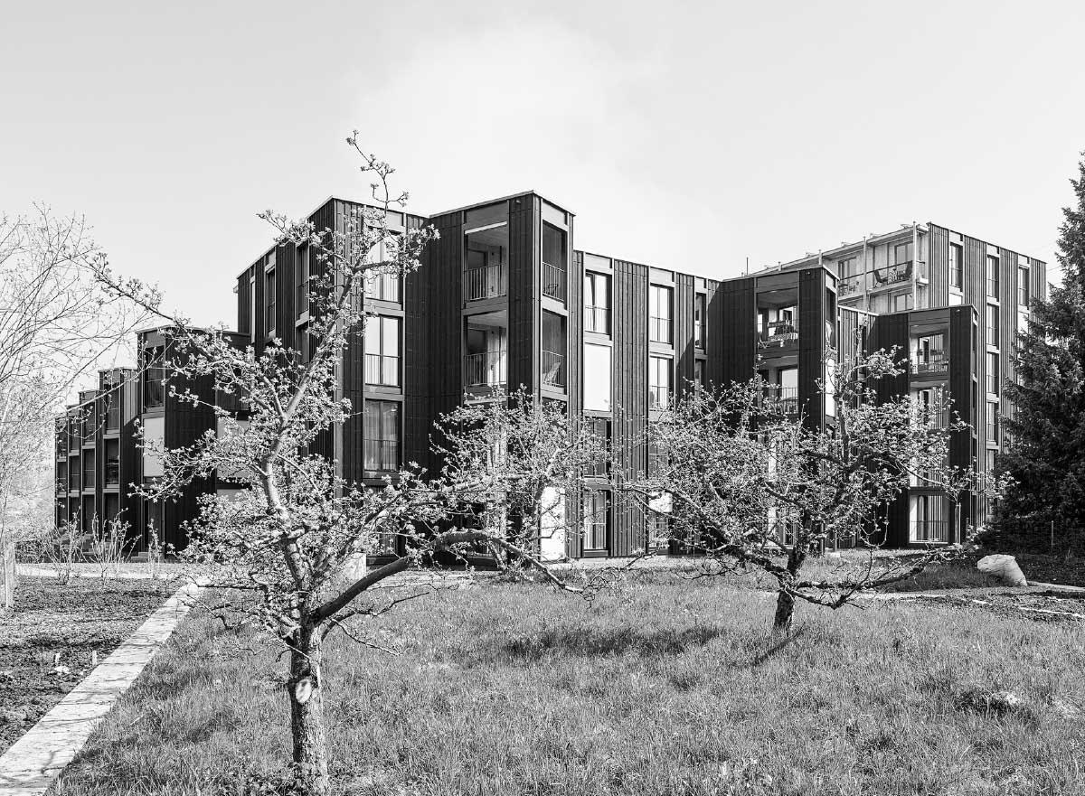 Private Aussenzimmer und die dunkelgrün geschlämmte Vertikalschalung bestimmen die äussere Erscheinung der Siedlung. Bild: Georg Aerni