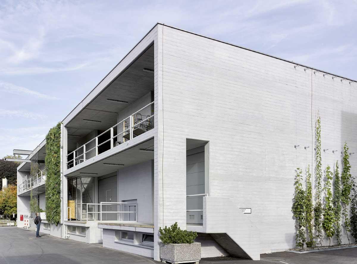 2017 haben Raderschall Partner einen Bestandsbau der Stadtgärtnerei Zürich mit vier Grünsystemen bodengebunden bestückt. Bild: Johannes Marburg