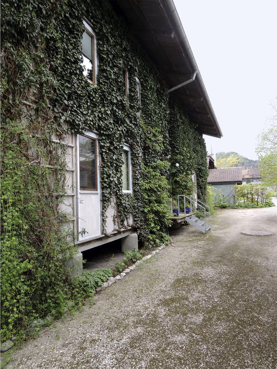 Nach dreissig Jahren ist das Doppelwohnhaus von Peter C. Jakob von einem Pflanzenvorhang umrankt, so wie es von Anfang an vorgesehen war.