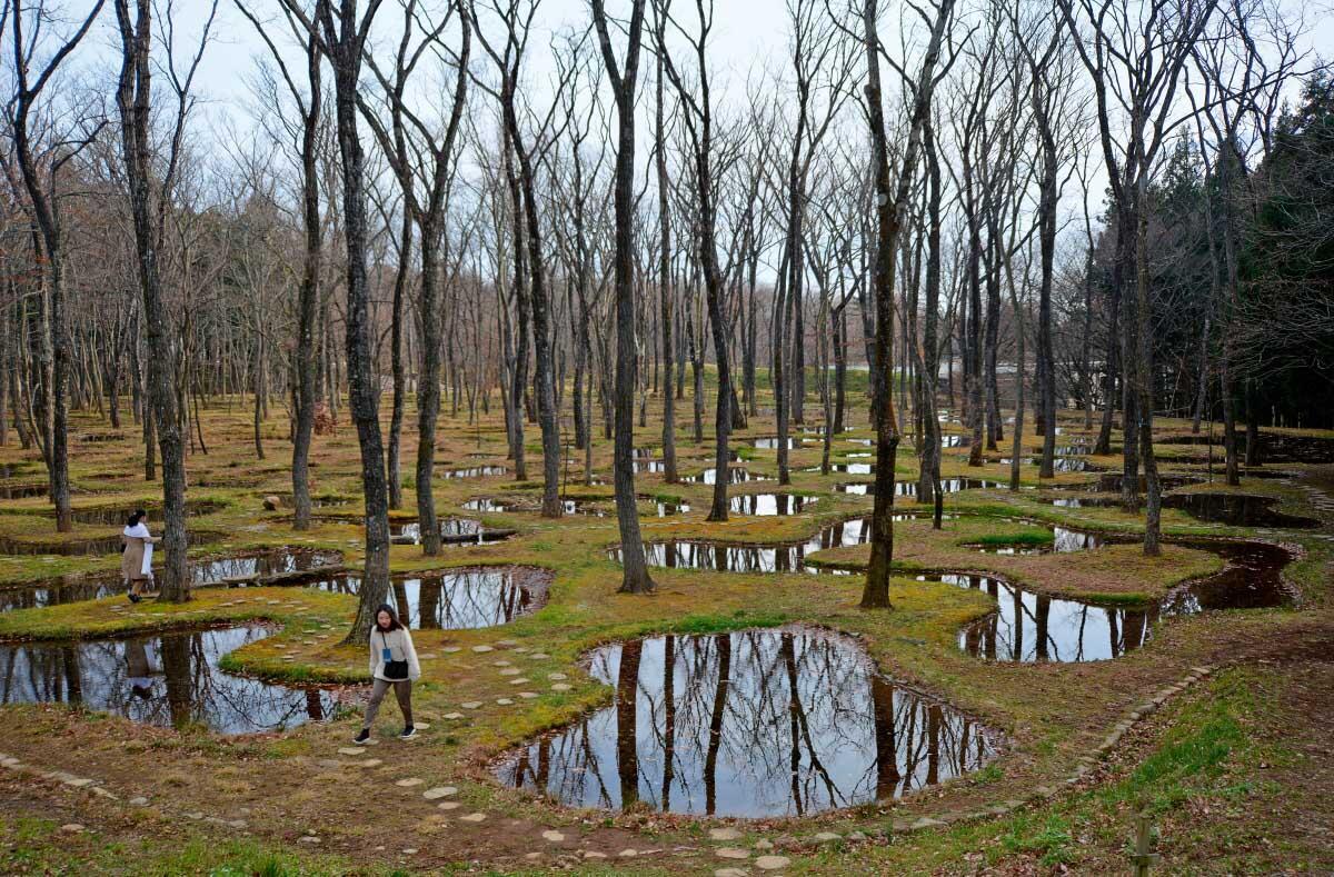 Wie in der japanischen Tradition soll die Wasserlandschaft eine «neue Form der Natur» sein. Bild: Hubertus Adam