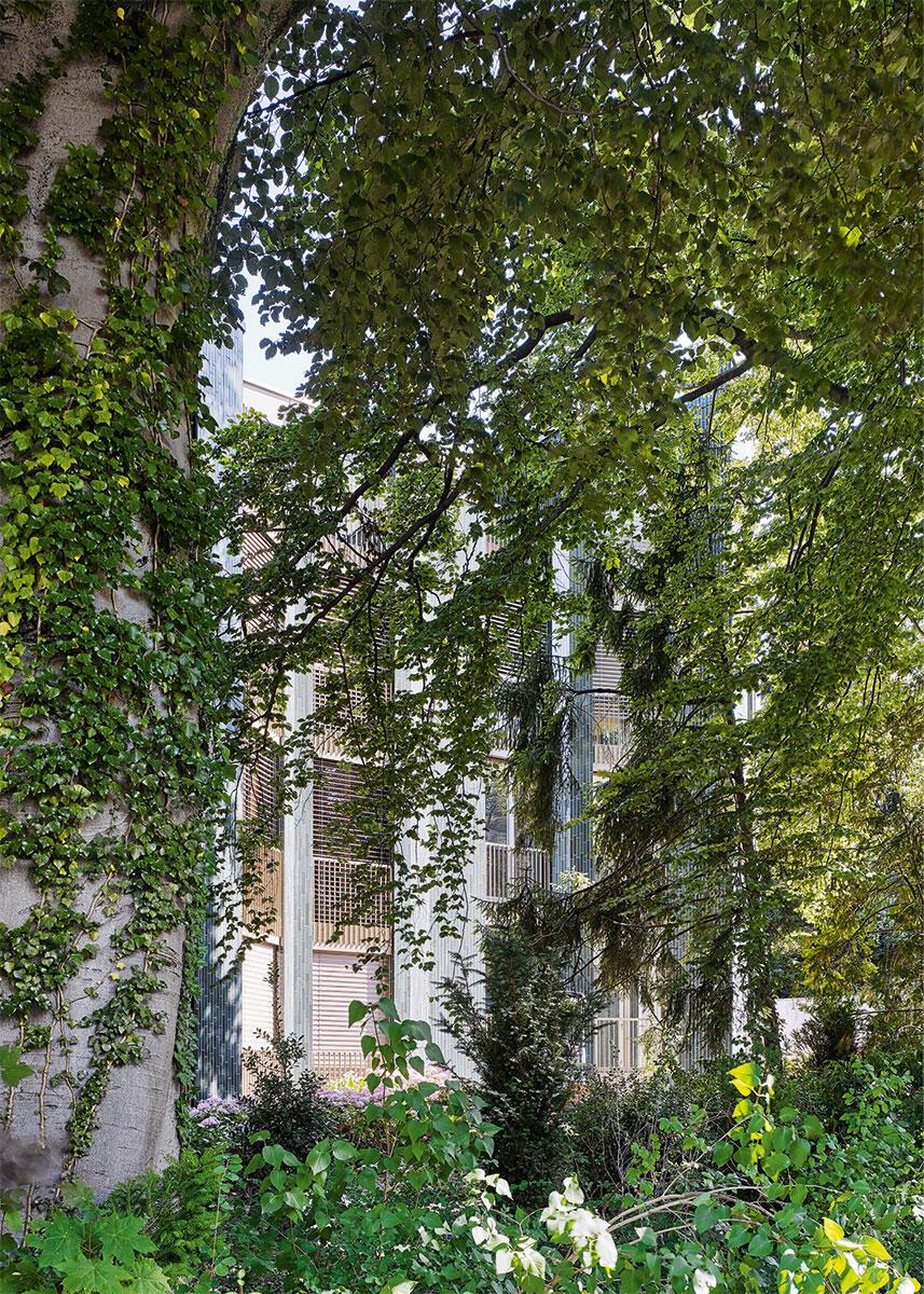 Ein romantischer Traum wird Wirklichkeit: Wohnen mitten in der Stadt Zürich, umgeben von alten, ehrwürdigen Bäumen. Architektur: EMI Architekten