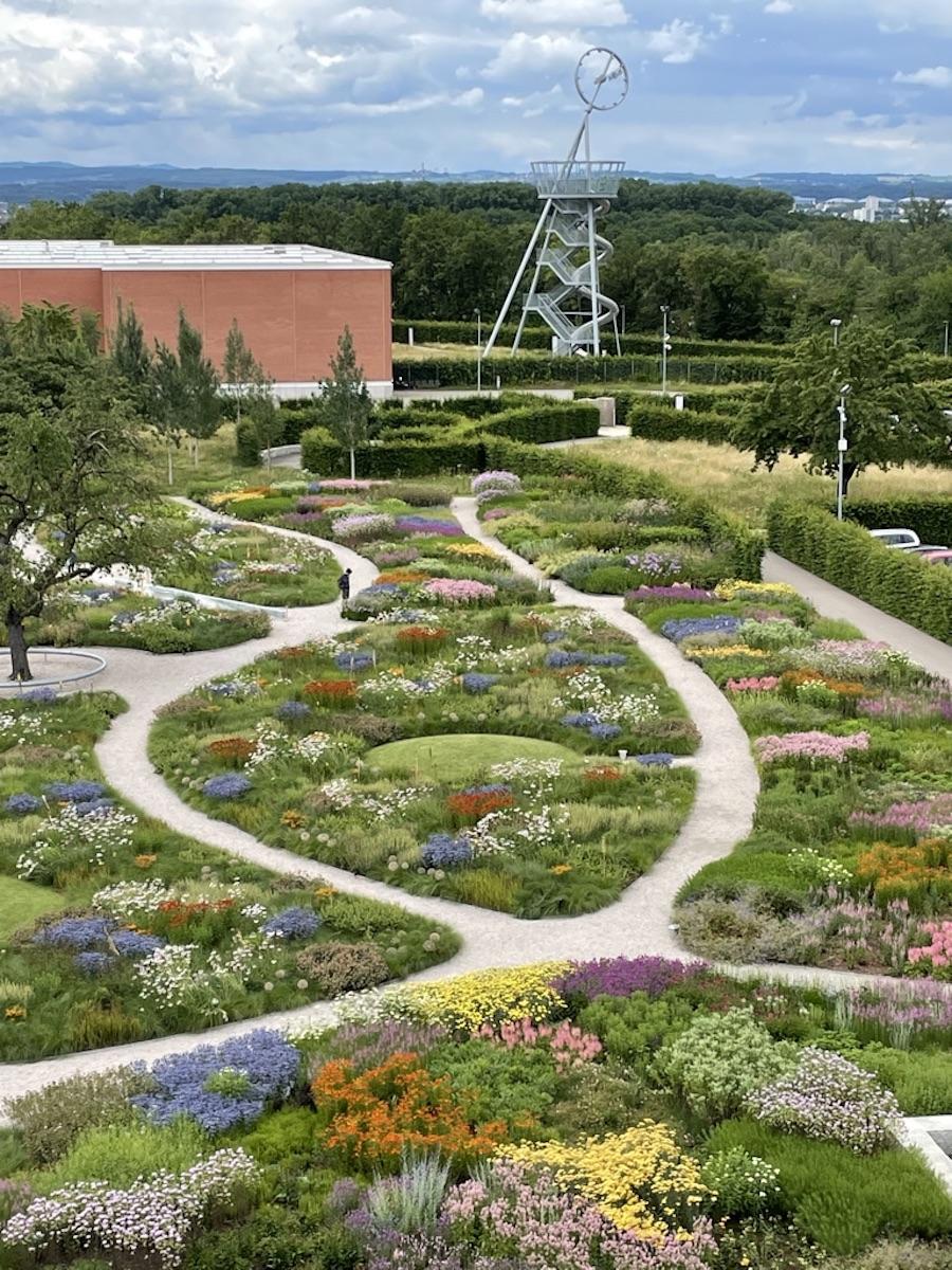 Ein Bild von einem Garten