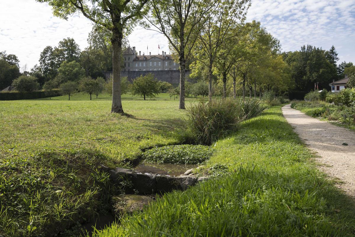 Planerische Massnahmen halten die Sichtachse vom Schloss auf den Genfersee frei. Sie sind Teil eines grünen Korridors, der sich durch die ganze Gemeinde zieht. Mit der Bach-Renaturierung geht eine ökologische Aufwertung  einher (2011, Landschaftsarchitektur: Paysagestion).  Bild: Christian Beutler